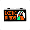 Exotic Birds